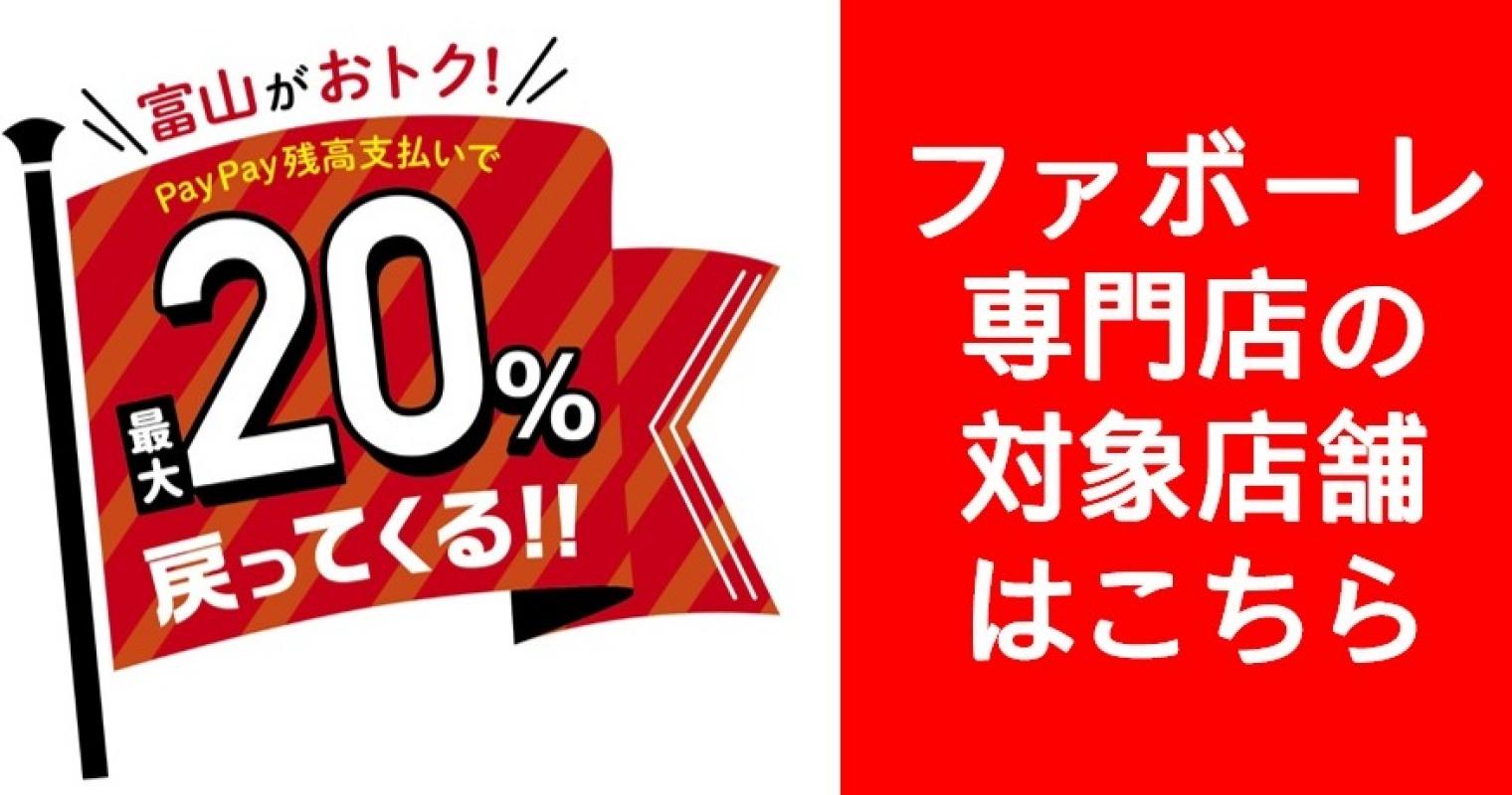 富山市×PayPayキャンペーン