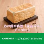【富山限定】乃が美の高級生食パンがもらえるご相談キャンペーン